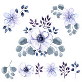 Watercolor set of anemone flowers and vegetation Royalty Free Stock Photos