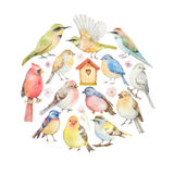 Watercolor set of birds and birdhouse in the shape of a circle Stock Photo