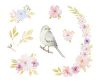 Watercolor set of birds, flowers and bouquets. Royalty Free Stock Photography