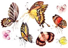 Watercolor set with butterflies . Illustrations stock illustration