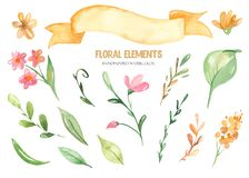 Watercolor set clipart of floral elements and ribbon