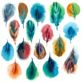 Watercolor set of colorful feathers. Royalty Free Stock Image