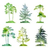 Watercolor set of conifer trees. Silhouettes, hand drawn isolated natural elements Royalty Free Stock Photo