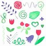 Watercolor set of floral design elements Stock Photos