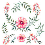 Watercolor set  with flowers Royalty Free Stock Image