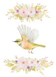 Watercolor set of flying birds and flowers. Stock Images