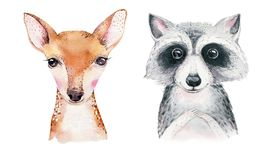 Watercolor set of forest cartoon isolated cute baby fox, deer, raccoon and owl animal with flowers. Nursery woodland. Forest cartoon isolated cute baby fox, deer royalty free illustration