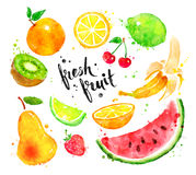Watercolor set of fruit royalty free illustration