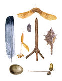 Watercolor set of nature objects Royalty Free Stock Image