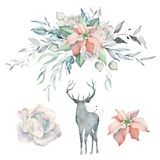 Watercolor set with Poinsettia Bouquet and Deer. Hand drawn watercolor winter bouquet with poinsettia and deer and rose. Great for Christmas creating cards vector illustration