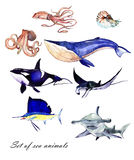 Watercolor set of sea fishes Stock Photo