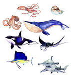 Watercolor set of sea fishes Royalty Free Stock Images