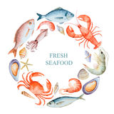 Watercolor set of seafood. From lobster, crab, fish, squid, octopus, shrimp, shells on a white background for your menu or design, vector illustration stock illustration