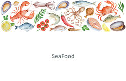 Watercolor set of seafood, vegetables and spices. Royalty Free Stock Photography