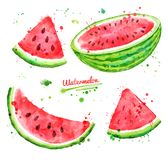 Watercolor set of watermelon royalty free illustration