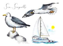 Free Watercolor Set With Two Seagulls And A Yacht In The Sea Stock Images - 115973644