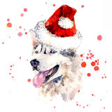 Watercolor sheepdog in red Santa Clause hat Royalty Free Stock Image