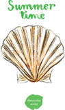 Watercolor shell Royalty Free Stock Image