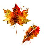 Watercolor silhouette of autumn leaves Royalty Free Stock Images