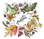 Watercolor sketch of autumn leaves royalty free illustration