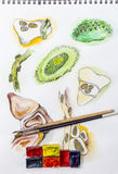 Watercolor sketch and brushes. Watercolor painting sketches, watercolor cubes and paint brushes Royalty Free Stock Images