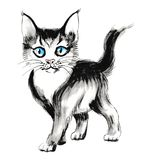 Cute kitten. Watercolor sketch of a cute blue eyed kitten Stock Images