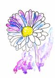 Watercolor sketch illustration, tattoo style: contour of a flower, gerbers on background of pink and lilac cosmos-like spots with. White stars, suitable for royalty free illustration
