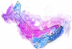 Watercolor sketch illustration, tattoo style: whale contour, killer whale against a background of pink and lilac cosmos. Like spots with white stars, suitable stock photo
