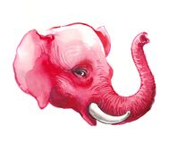 Pink elephant. Watercolor sketch of a red pink elephant royalty free stock photo