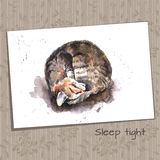Watercolor Sketch of a Sleeping Home Cat Stock Photo