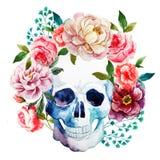 Watercolor skull Royalty Free Stock Photo