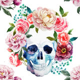 Watercolor skull Stock Photos