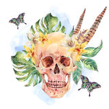 Watercolor skull, tropical leaves, flowers, butterflies and feat Royalty Free Stock Photo