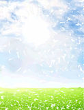 Watercolor sky and green background. CAN BE USED BY MANY COMPANIES Royalty Free Stock Photography