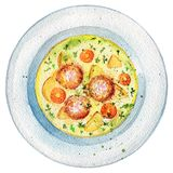 Watercolor soup on a plate with meatballs, dill, potatoes and ca. Delicious soup on a plate with meatballs, dill, potatoes and carrots. Picture isolated at white Royalty Free Stock Photography