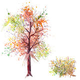 Watercolor splash tree and bush. Big hand drawn watercolor splash green orange autumn tree and shrub, isolated on the white background Stock Photos