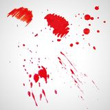 Watercolor splashes. Bright watercolor splashes isolated on white background Stock Image