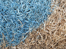 Watercolor splatter on hay. Watercolor splatter on the dry hay floor Stock Image