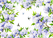 Watercolor spring background with blooming branches and flying s Royalty Free Stock Photos
