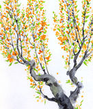 Watercolor spring background. Delicate flowers on branches Stock Image