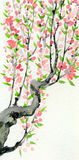 Watercolor spring background. Pink flowers on tree branches Stock Image