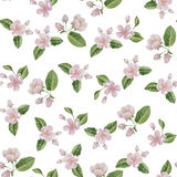 Watercolor spring blossom flowers seamless pattern Stock Photos