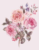 Watercolor spring bouquet with blooming cherry and english roses. Shabby vintage garden watercolor spring bouquet with pink flowers blooming branches of cherry stock photography