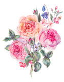 Watercolor spring bouquet with blooming cherry and english roses Royalty Free Stock Images