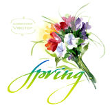 Watercolor spring bouquet Stock Image