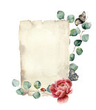 Watercolor spring card with eucalyptus, peony flower, butterfly and ladybug. Hand painted paper texture with insect and Stock Photography