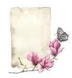 Watercolor spring card with magnolia and butterfly. Hand painted paper texture with insect and floral design isolated on Royalty Free Stock Photography