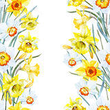 Watercolor spring floral pattern Royalty Free Stock Image