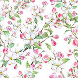 Watercolor spring floral pattern Stock Photos