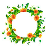 Watercolor Spring flowering branches, dandelion flowers, blossom round frame isolated on white background. Stock Images